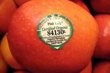 Thấy tem dán trên trái cây bắt đầu bằng số này, chị em chớ dại mà mua